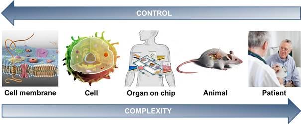 UT ontwikkelt nieuwe chip om medicijnen te testen
